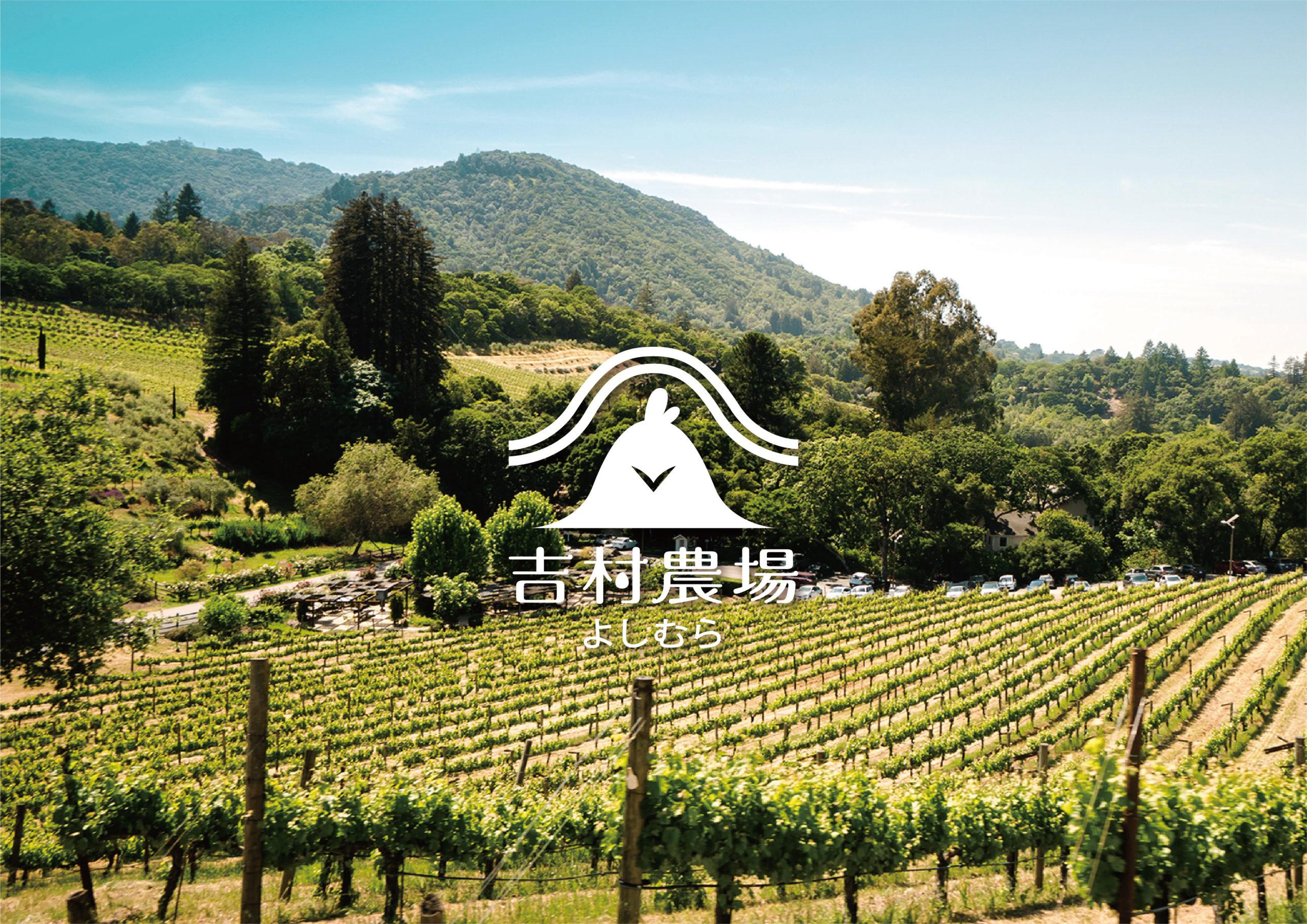 吉村農場 | CIS品牌形象設計